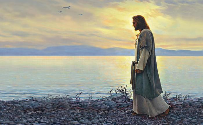 5 Questions Jesus Asked and How Our Answers Can Change the Way We Walk with Him